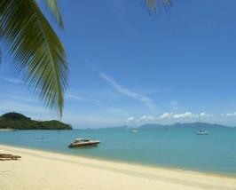 Palmenstrand am Bo Phut Beach